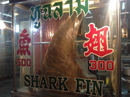Aleta de tiburón expuesta en un restaurante de Chinatown de Bangkok (Tailandia).