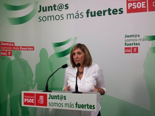 La secretaria general del PSOE de Cádiz, Irene García