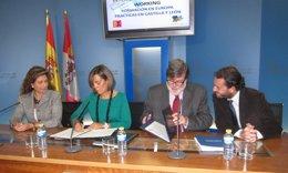 Presentación del programa International Training Working