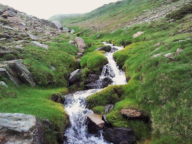 Arroyo de montaña de Sierra Nevada
