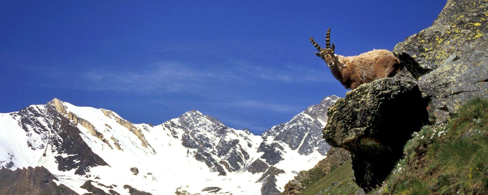 Parc Naturel Rgional Du Vercors Rhne Alpes France