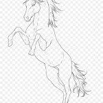 Arabian Horse Line Art Pony Sketch Png 764x1045px Arabian Horse Animal Figure Arm Art Artwork Download