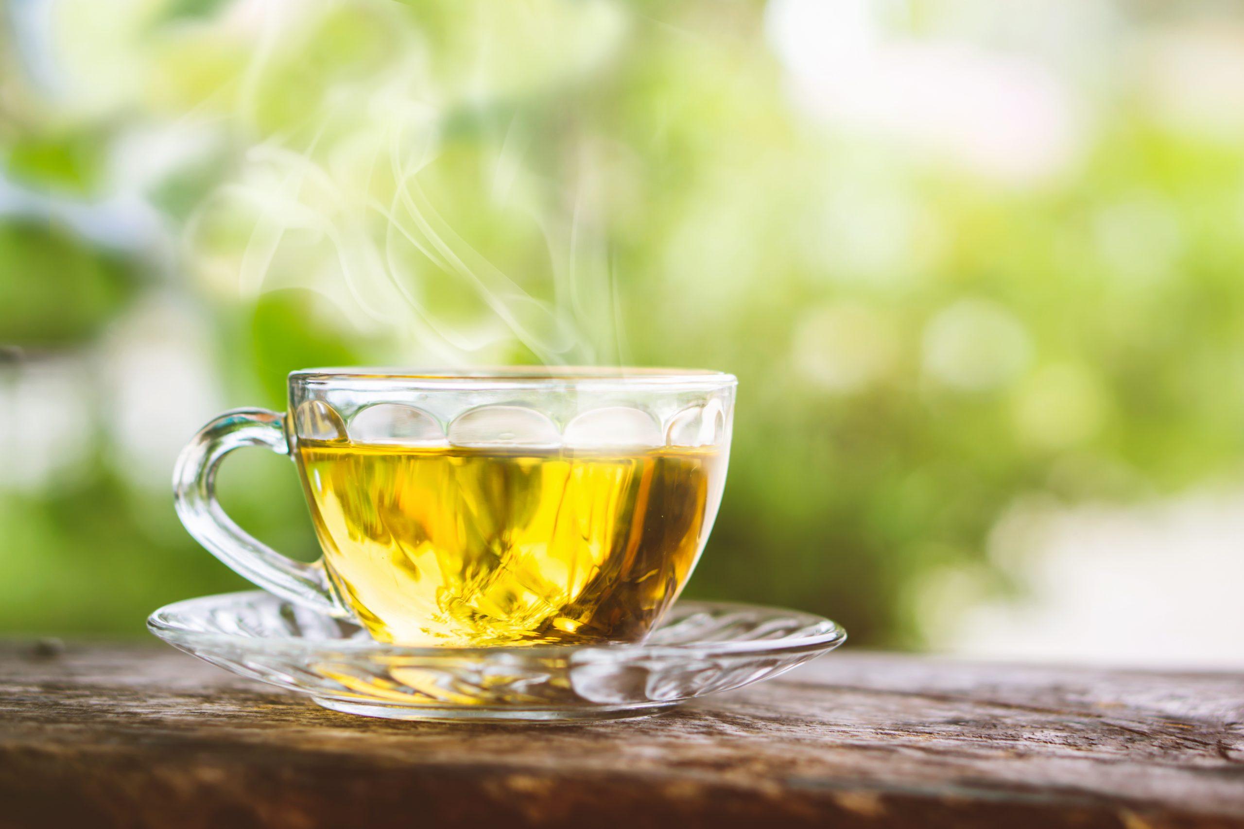 Diferença entre chá, infusão, tisana e rooibos