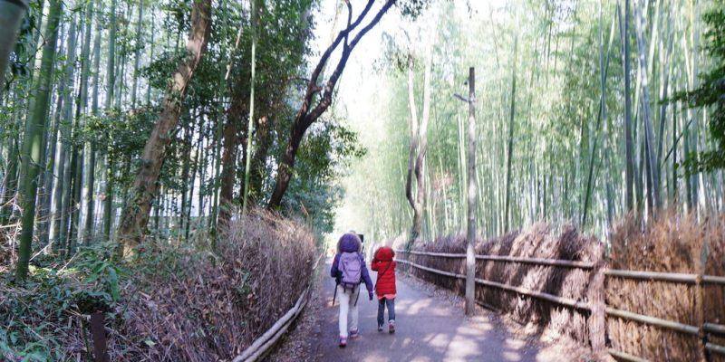 日本自由行:出國跟團或自助?適合自己的旅遊方式 就是最好的旅遊方式