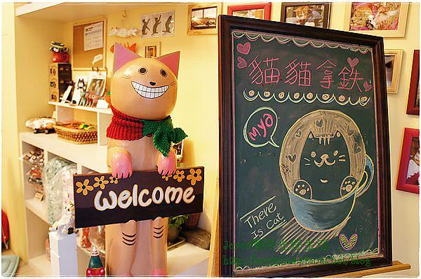 [台中寵物餐廳]西區∥這裡有貓寵物餐廳~來杯卡哇依貓貓拿鐵,逗逗貓兒好療癒