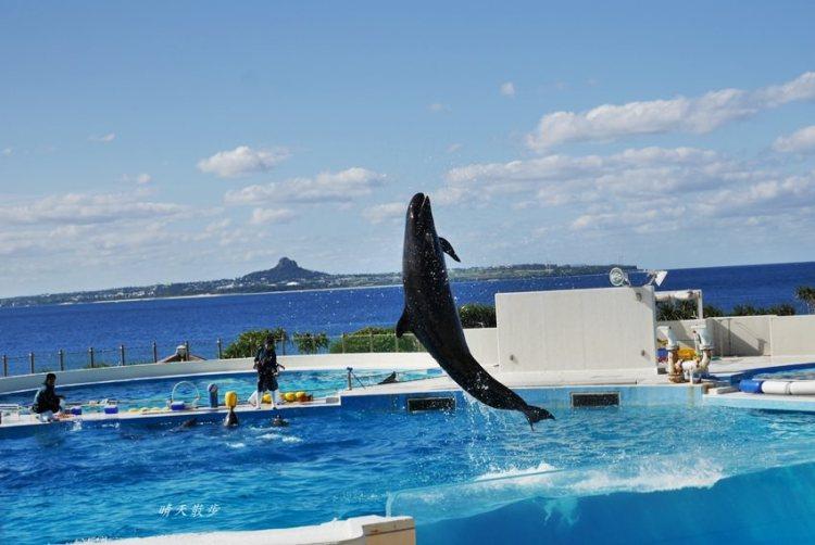 沖繩親子遊|不自駕也能玩遍海洋博公園~搭YANBARU/山原急行巴士到沖繩水族館、今歸仁城