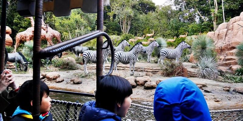 東京迪士尼 探險樂園~叢林巡航:勇闖野生世界~老少咸宜 搭船遊河看野生動物?