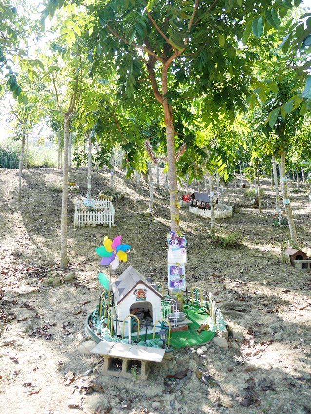 20181121080837 26 - 熱血採訪|深耕寵物森林園區~台中太平寵物送行者 接體、火化、樹葬、花葬、塔位 安心打理毛孩子的身後事