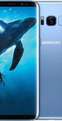 SAMSUNG Galaxy S8 Plus Coral Blue 64 GB