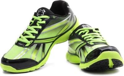 Lee Cooper Men Running Shoes(Black, Green)