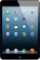 Apple iPad mini 64 GB 7.9 inch with Wi-Fi+3G(Black and Slate)