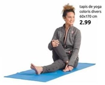 tapis de yoga coloris divers
