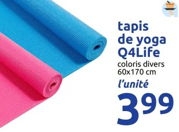 tapis de yoga q4life
