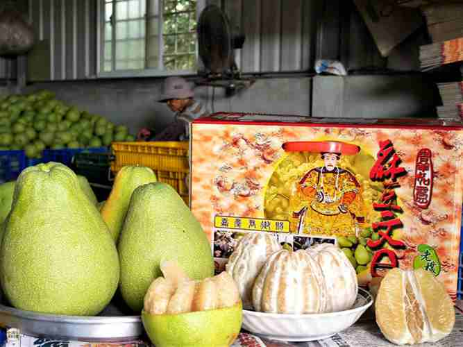 【台南-麻豆美食】麻豆老欉文旦柚子哪裡買?怎麼挑?台南美食地圖分享讓你知道
