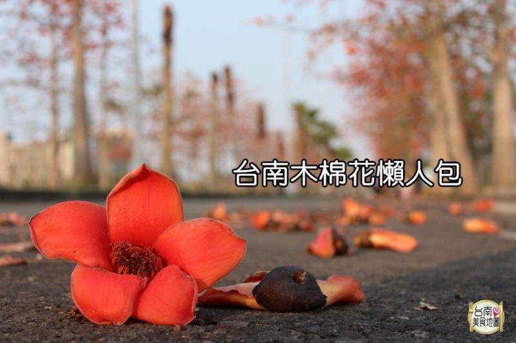 台南木棉花懶人包│收集了臺南必訪的木棉花景點,賞木棉花必看