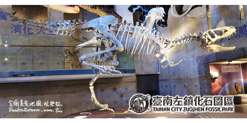 台南左鎮景點│全台唯一化石博物館,快來左鎮化石園區看化石尋找你的侏儸紀吧!