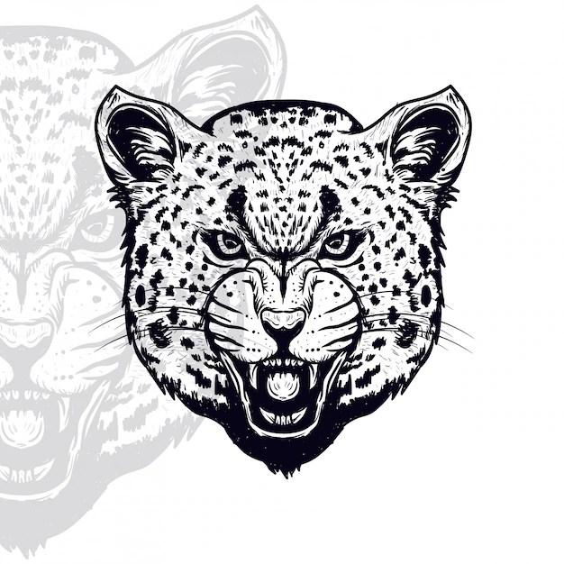Дикий леопард головы векторные иллюстрации Вектор Скачать