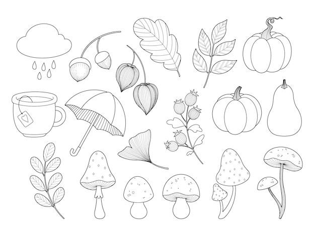 Premium Vector Autumn Leaves Plants Mushrooms Pumpkin Outline Contour Coloring Page