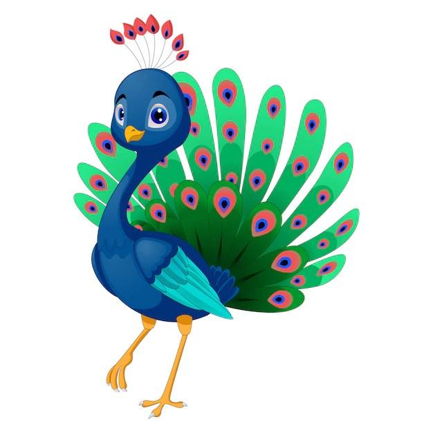 Free Vector Beautiful Peacock Design
