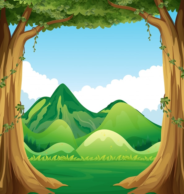 Forest Vectors Photos And PSD Files Free Download