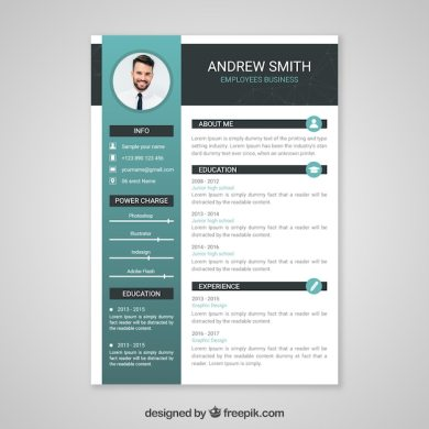Resume Vectors  Photos and PSD files   Free Download Professional curriculum vitae template