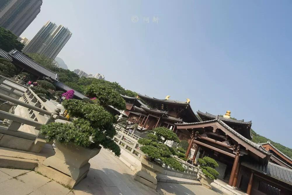 香港西蓮園-21