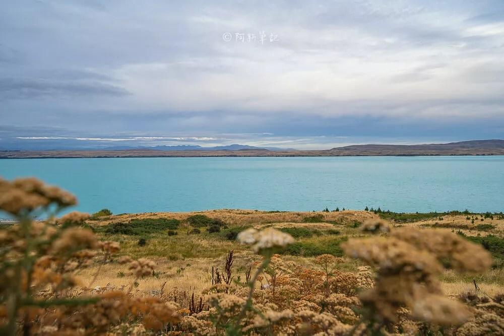 紐西蘭牛奶湖,藍色牛奶湖,紐西蘭湖,紐西蘭旅遊,紐西蘭南島,普卡基湖,Lake Pukaki,Lake Pukaki景點,紐西蘭自由行,紐西蘭旅遊,紐西蘭自助