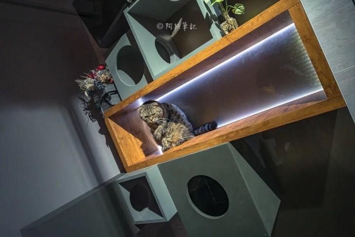 DSC09184 - 熱血採訪│台中這間餐酒館有夠隱密,特別的是連早午餐、甜點都有!BottleCat貓瓶子小酒館