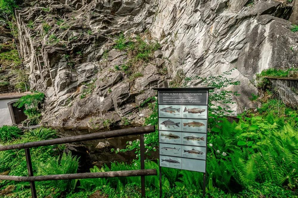 瑞士冰川公園glacier garden,瑞士冰川公園,glacier garden,瑞士冰河公園,冰川公園,冰河公園,瑞士琉森景點
