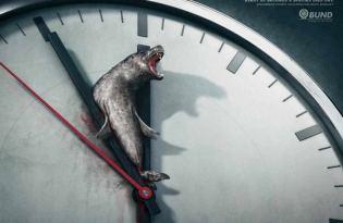 [平面設計]愛護動物宣傳海報