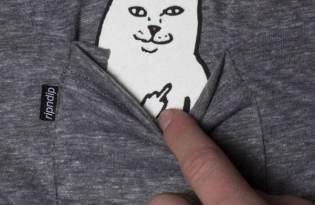 [服裝設計]Lord Nermal「賊頭賊腦kuso貓咪T恤」