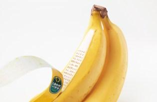 [包裝設計]日本設計「香蕉果皮產地說明書」