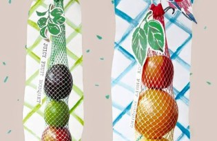 [視覺傳達]水果造型創新包裝設計