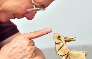 [設計工藝]Origami Day摺紙藝術世界