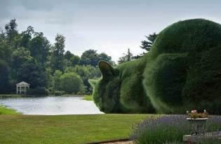 [視覺傳達]巨大喵星人花園造景裝置藝術
