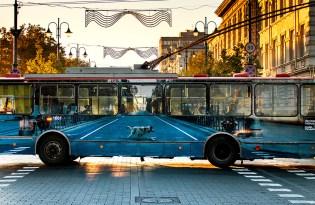 [插畫彩繪]公車視覺地景裝置藝術