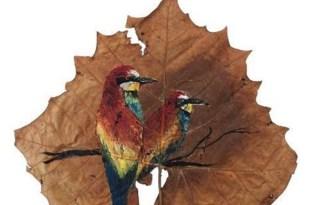[平面設計]落葉插畫視覺藝術