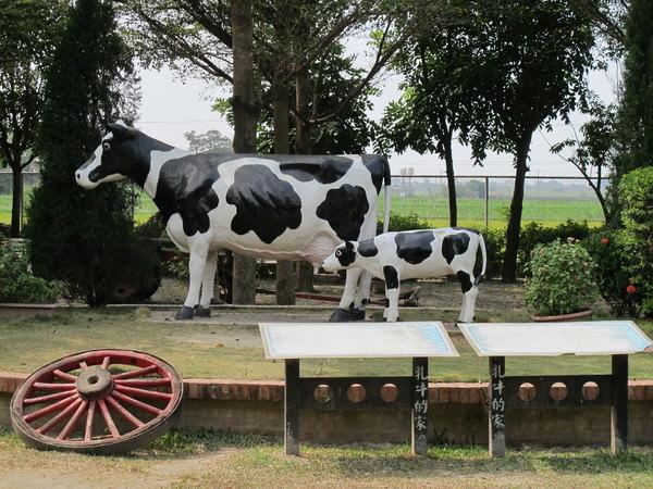 (台南。柳營區景點)假日好去處 :+:乳牛的家 休閒牧場:+: