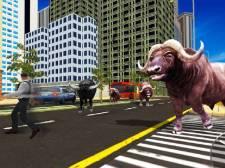 Tireur de taureaux sauvages