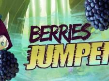 Berries Jumper