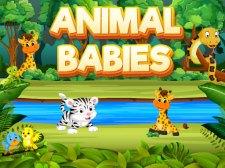 Động vật trẻ sơ sinh