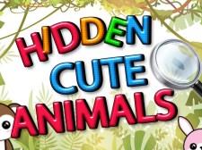 隐藏的可爱动物