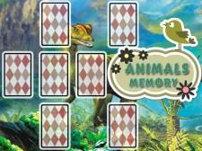 动物卡记忆