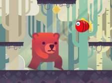 Bear Adventures