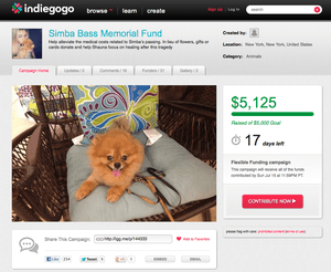 OK! Magazine Editor Accepts Thousands of Dollars From PR People After Her Dog Dies