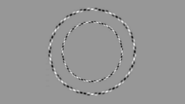 These obviously irregular rings are actually perfectly round circles