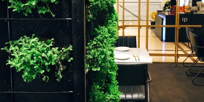 Herbivore 》 新光三越A4餐廳   Taipei Vegan Restaurant