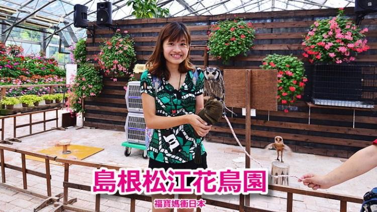 島根親子景點~松江花鳥園,萌翻貓頭鷹 企鵝遊行 鳥鳥餵食體驗