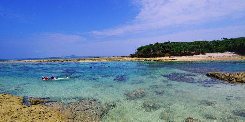 [沖繩秘境沙灘] 備瀨崎海岸,不用浮潛就有好多熱帶魚