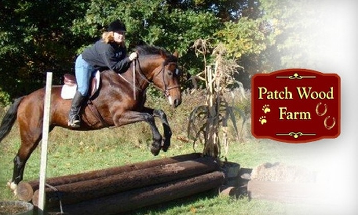 Up To 56 Off Equestrian Lessons In Sandown Patch Wood